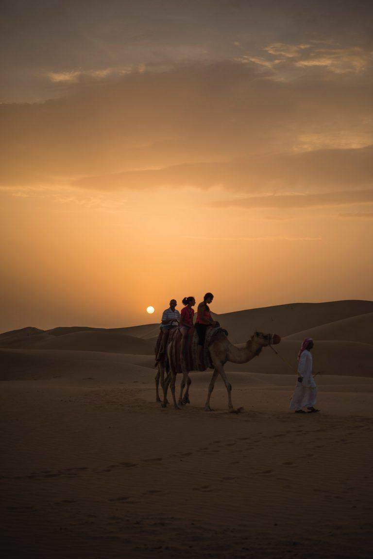 Tourisme solidaire : promenade d'un chameau dans le désert au coucher du soleil