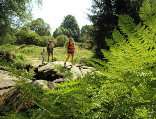 Idées d'activités naturel en Limousin