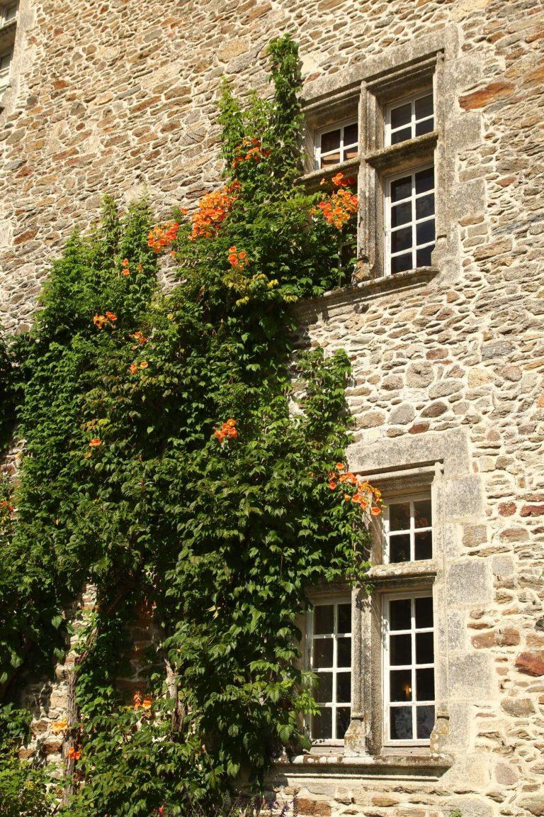Façade du château de Pompadour, Corrèze
