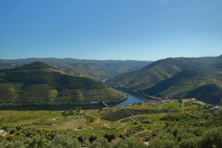 Vallée du Douro vu depuis Pinhao